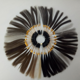 Toupees Color Ring for Stock Hair Systems