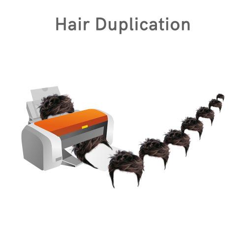 Duplicate a system