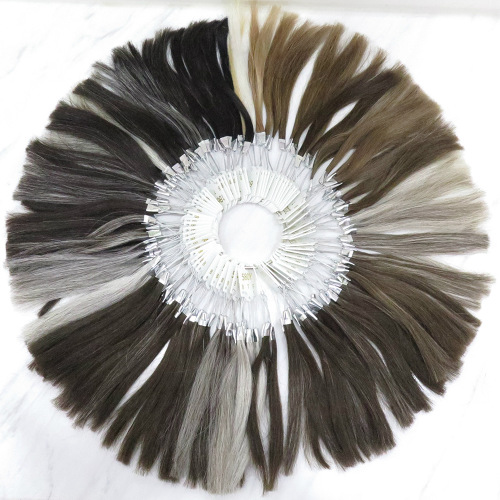 Toupees Color Ring for Custom Made Hair Systems